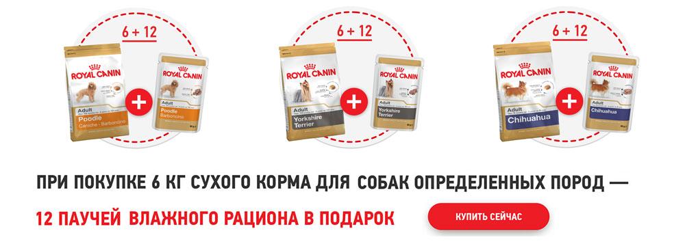 Мефедрон Сайт Каменск-Уральский Exstazy Недорого Владимир
